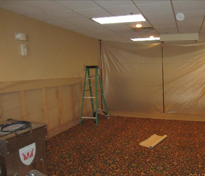 Commercial Mold After