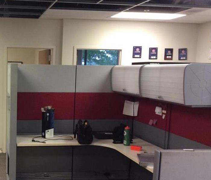 Exposed ceiling tiles, drying cubicle