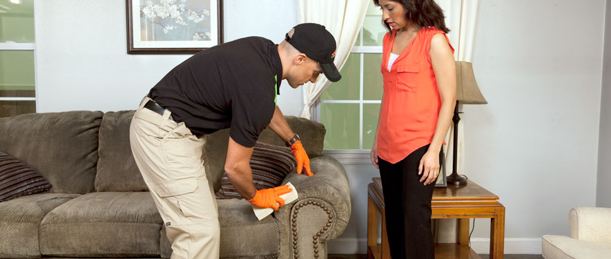 Sevierville, TN carpet upholstery cleaning