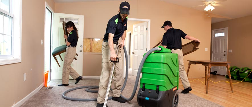 Sevierville, TN cleaning services