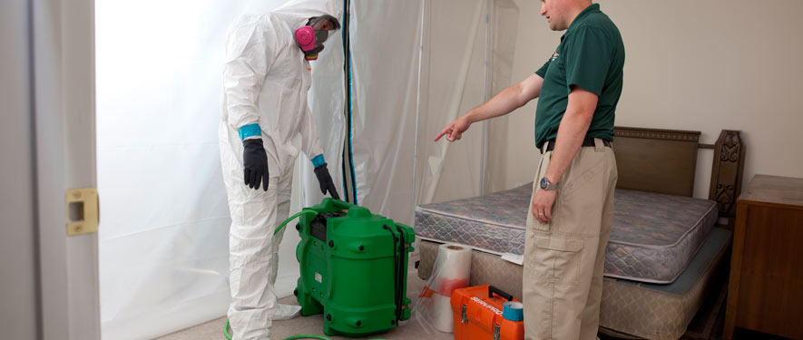 Sevierville, TN mold removal process